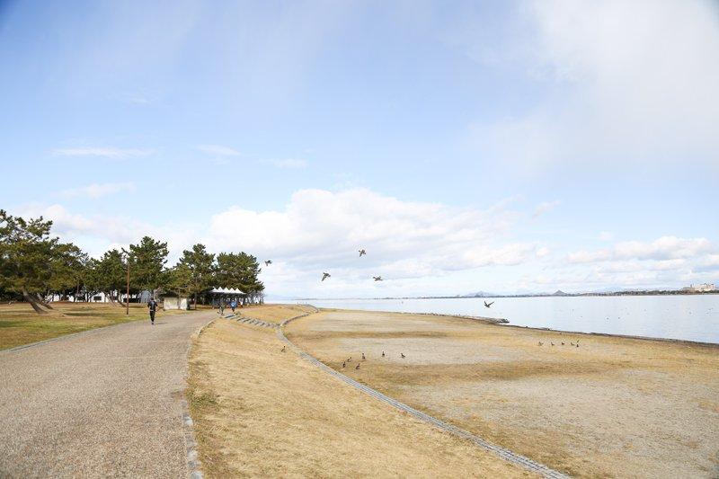 琵琶湖沿いにきれいに整備された歩道